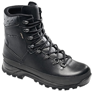 Lowa Mountain GTX Waterproof Hiker Boot